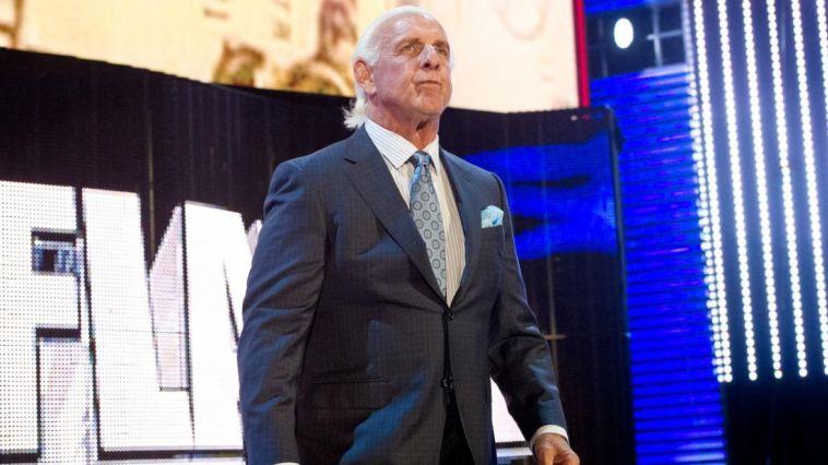 ריק פלייר. WWE