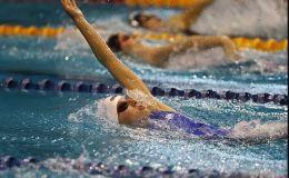 אליפות אירופה בשחייה