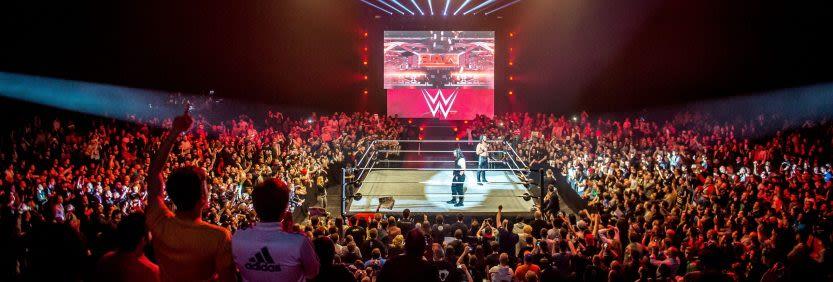 היאבקות WWE