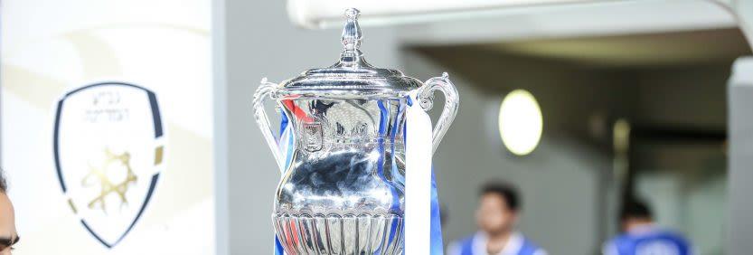 גביע המדינה