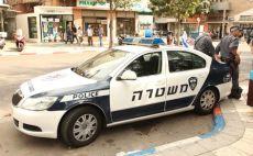 ניידת משטרה צילום(צילום: אלוני מור)