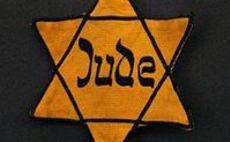 טלאי צהוב צילום(צילום: וויקיפדיה)