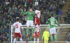 צפון אירלנד נגד שווייץ צילום(AFP)