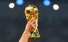 גביע העולם צילום(Gettyimages)