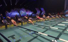 ליגת השחייה העולמית צילום(מסך)