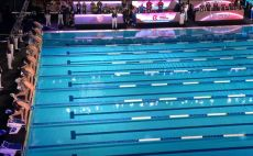שחייה צילום(מסך)