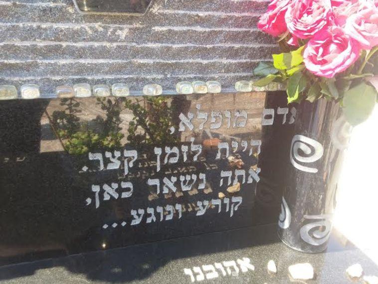 """עשרות ספורטאים עלו לקברו של ניצן שירזי ז""""ל"""