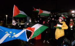 מפגינים פרו פלסטינים
